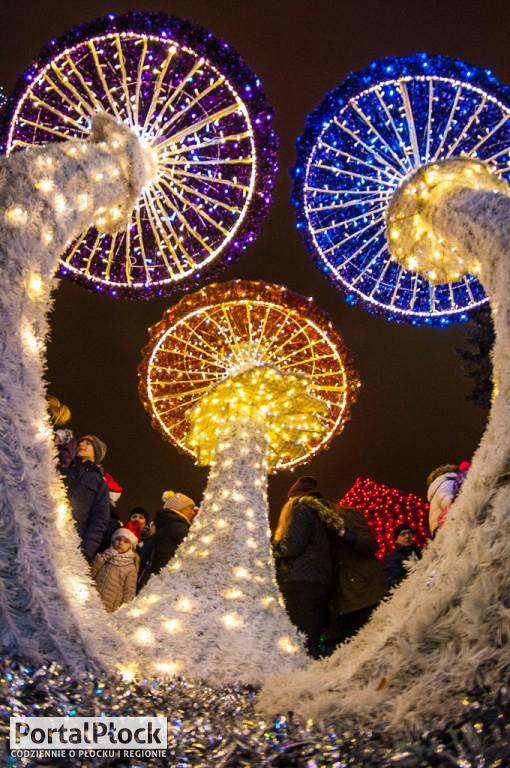 Płockie Ogrody Światła otwarte - Zdjęcie główne