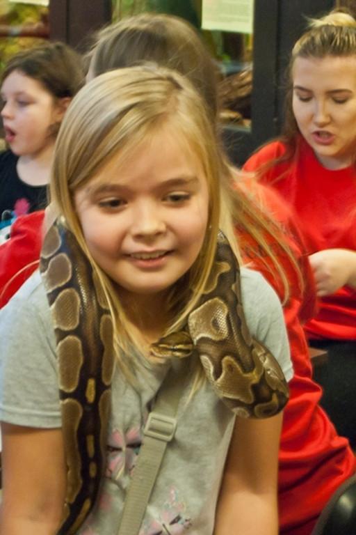 Kto weźmie węża na szyję? Znaleźli się śmiałkowie - Zdjęcie główne