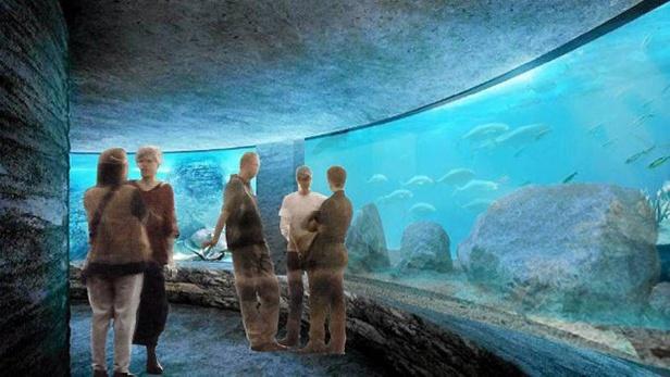 Rusza budowa akwariów w zoo. Za 6 mln zł - Zdjęcie główne