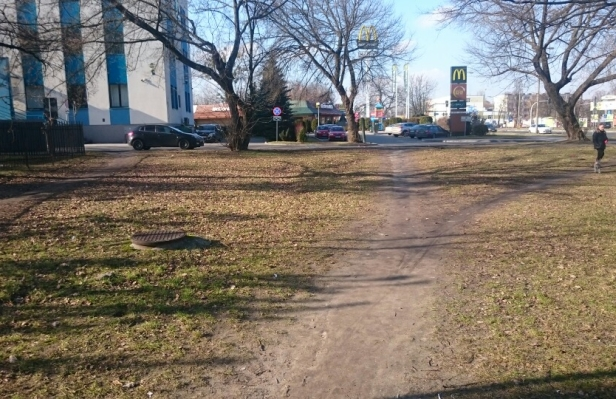 Po trawniku do urzędu. Wydeptali ścieżkę - Zdjęcie główne