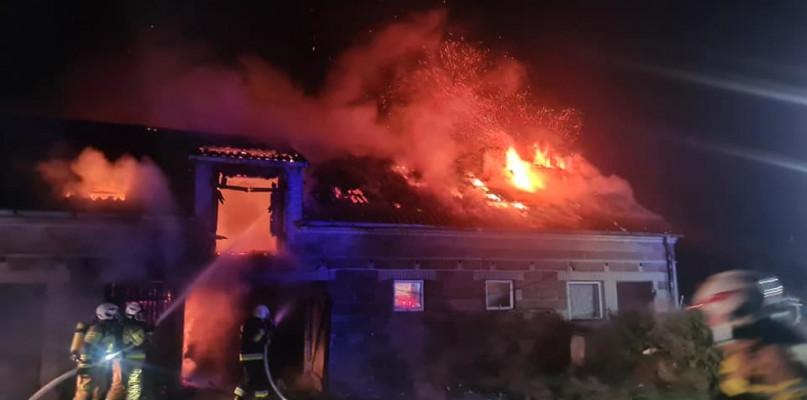 Pożar w powiecie płockim. Kilkudziesięciu strażaków w akcji - Zdjęcie główne