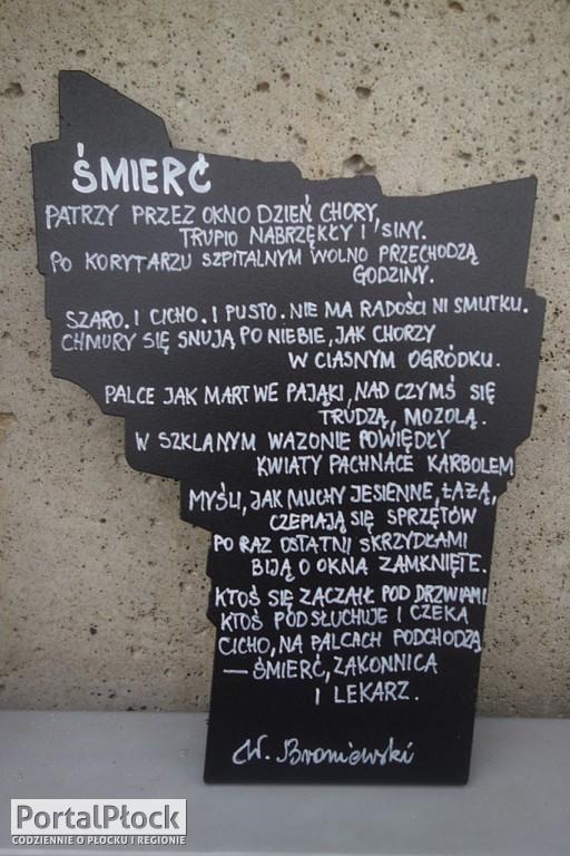 Miniaturowe pomniki Broniewskiego - Zdjęcie główne
