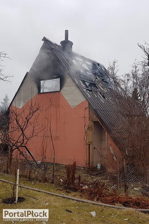 Pożar na ogródkach działkowych - Zdjęcie główne