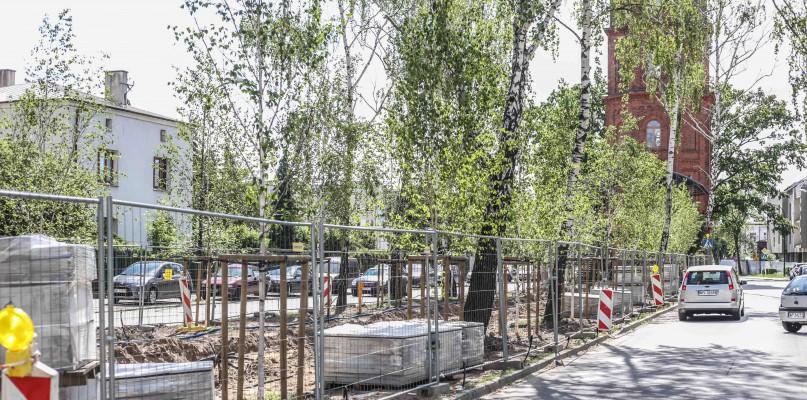 Rozwój terenów zieleni w mieście Płocku - Zdjęcie główne
