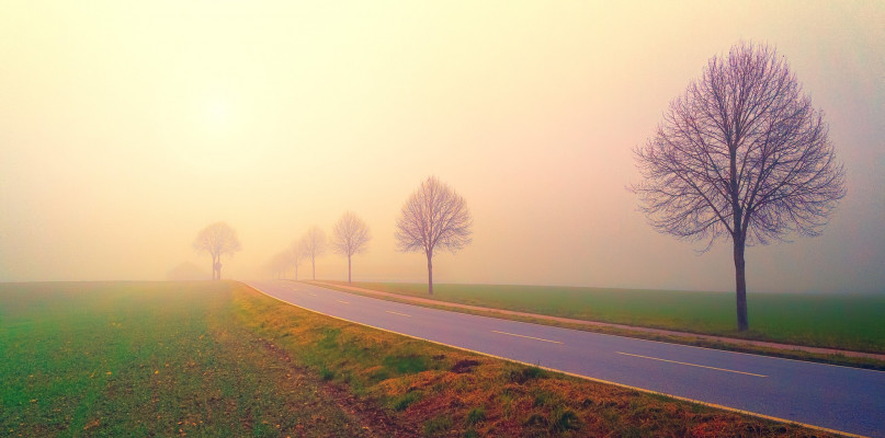 Uwaga kierowcy: nadciąga gęsta mgła - Zdjęcie główne