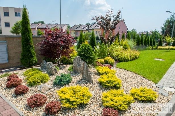 Oto najładniejszy ogródek w Płocku [FOTO] - Zdjęcie główne