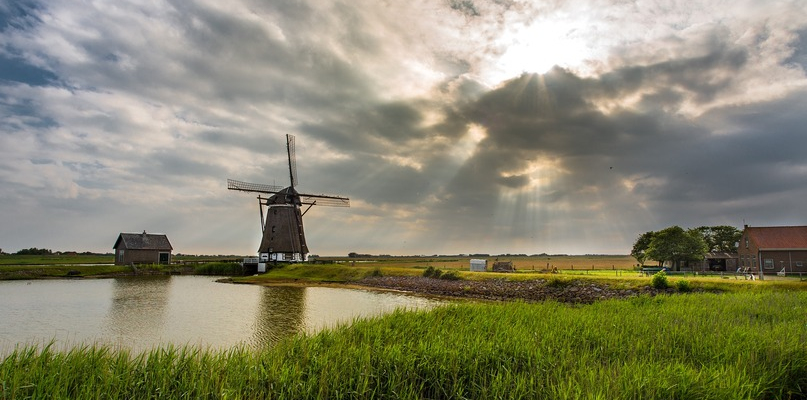 Jak żyje się i pracuje w Holandii - Zdjęcie główne
