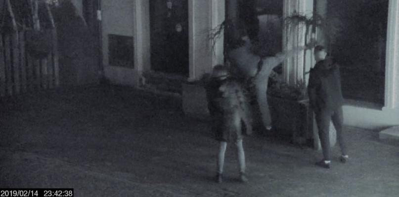 Jeden ćwiczył karate na drzewku, drugiego poszukiwała policja. Obu nagrały kamery - Zdjęcie główne