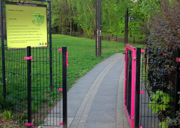 Zobacz, jak wygląda park dla psów [FOTO] - Zdjęcie główne