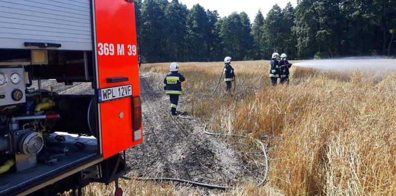 Pożary wciąż groźne w powiecie płockim - Zdjęcie główne