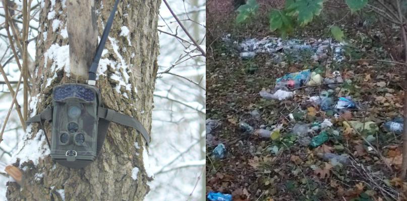 Fotopułapki już na drzewach. Rozwiążą problem śmieci? - Zdjęcie główne