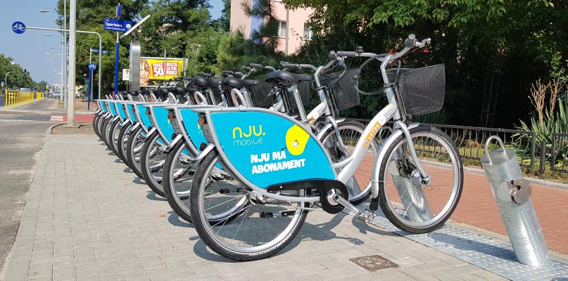 Płocczanie pokochali rower miejski. Już ponad 4,5 tys. wypożyczeń - Zdjęcie główne