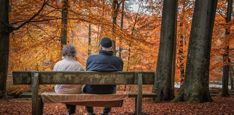W Płocku ubyło prawie 800 mieszkańców. Miasto ludzi starszych. I rozwodników - Zdjęcie główne