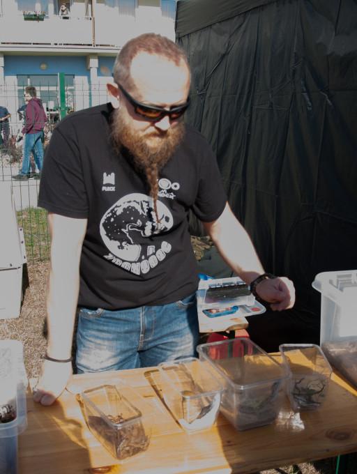 Piknik na Podolszycach - Zdjęcie główne