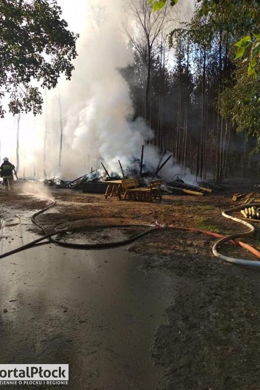 Pożar lasu w Duninowie - Zdjęcie główne