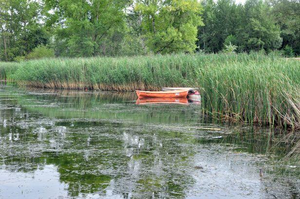 Wyłowione z zalewu zwłoki to ciało 43-latka - Zdjęcie główne