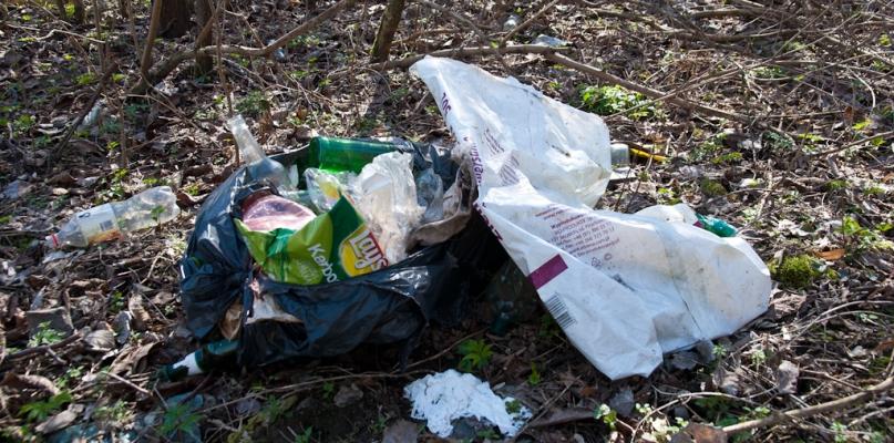 Zalegające tony śmieci. Dowody są, gorzej z ustaleniem winnych - Zdjęcie główne