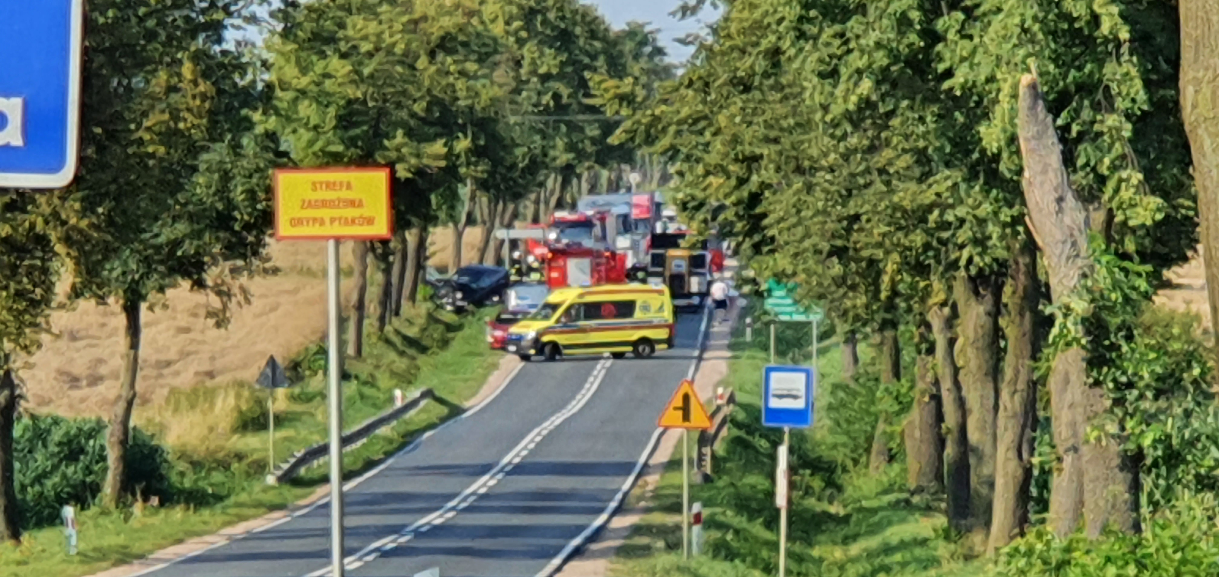 Czołowe zderzenie tuż za Płockiem. 27-letni motocyklista zginął na miejscu  - Zdjęcie główne