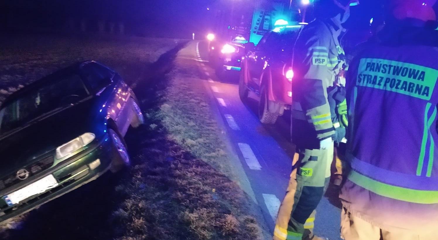 Wypadek pod Płockiem. Samochód wypadł z drogi [ZDJĘCIA] - Zdjęcie główne