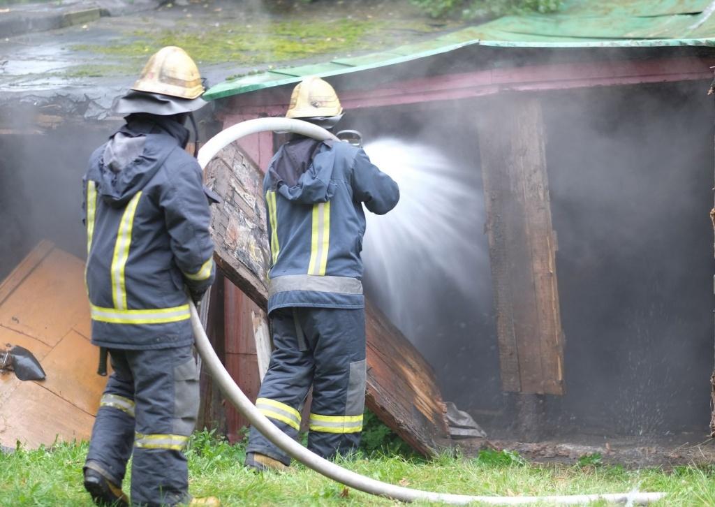 Pożar pod Poddębicami. Ewakuowano 50 sztuk bydła - Zdjęcie główne