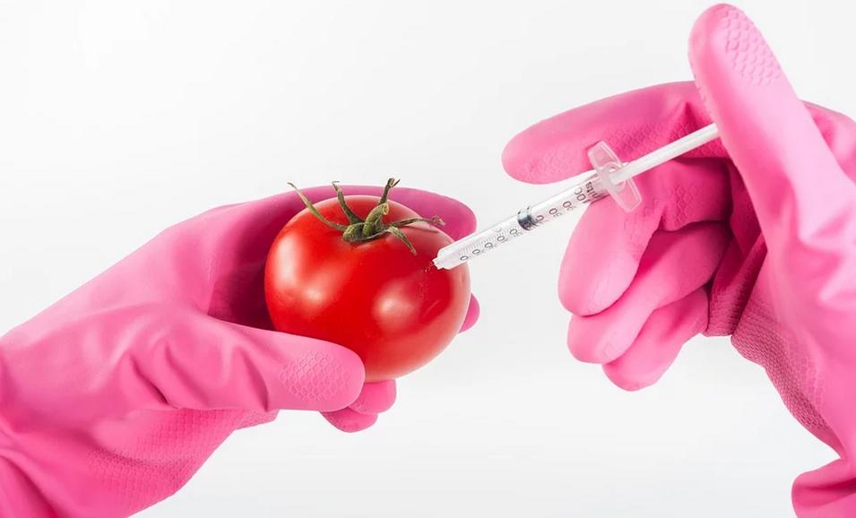 Bez GMO - może znaczyć coś innego niż myślisz - Zdjęcie główne
