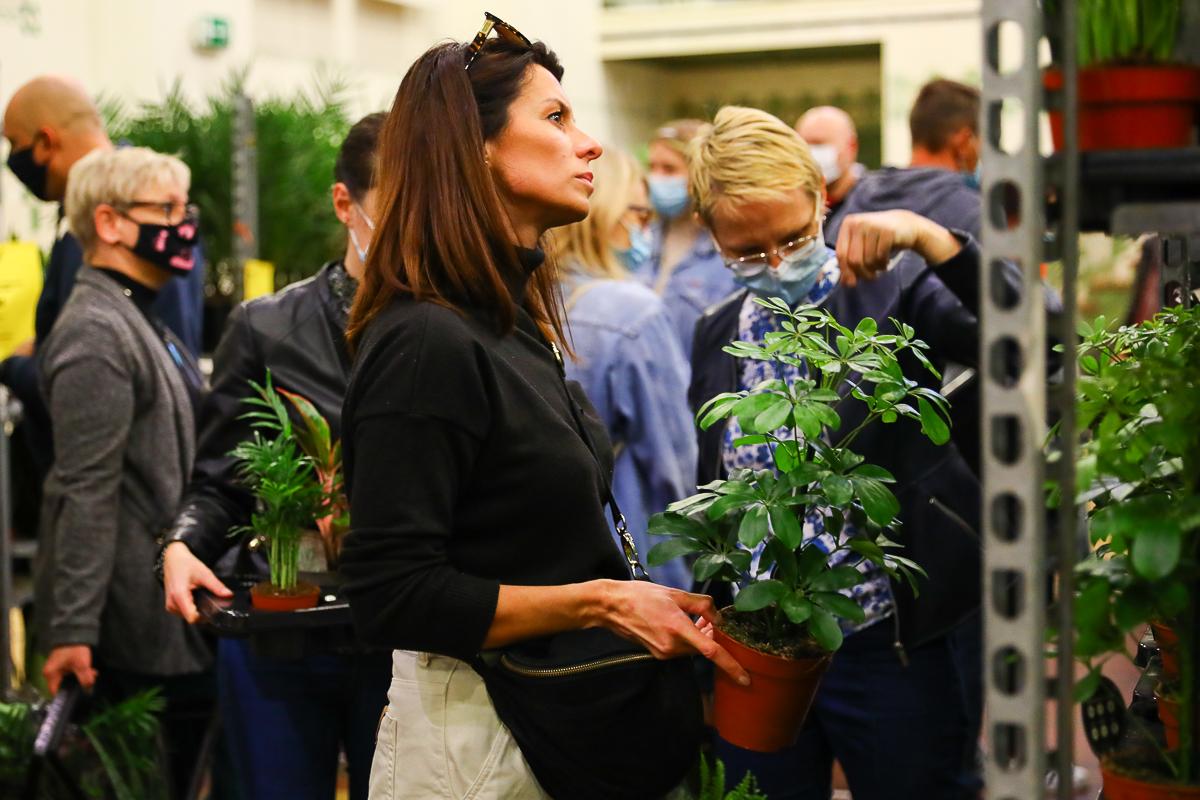 Targi roślin w EC1. Za nami wielkie święto kwiatów doniczkowych! [zdjęcia] - Zdjęcie główne