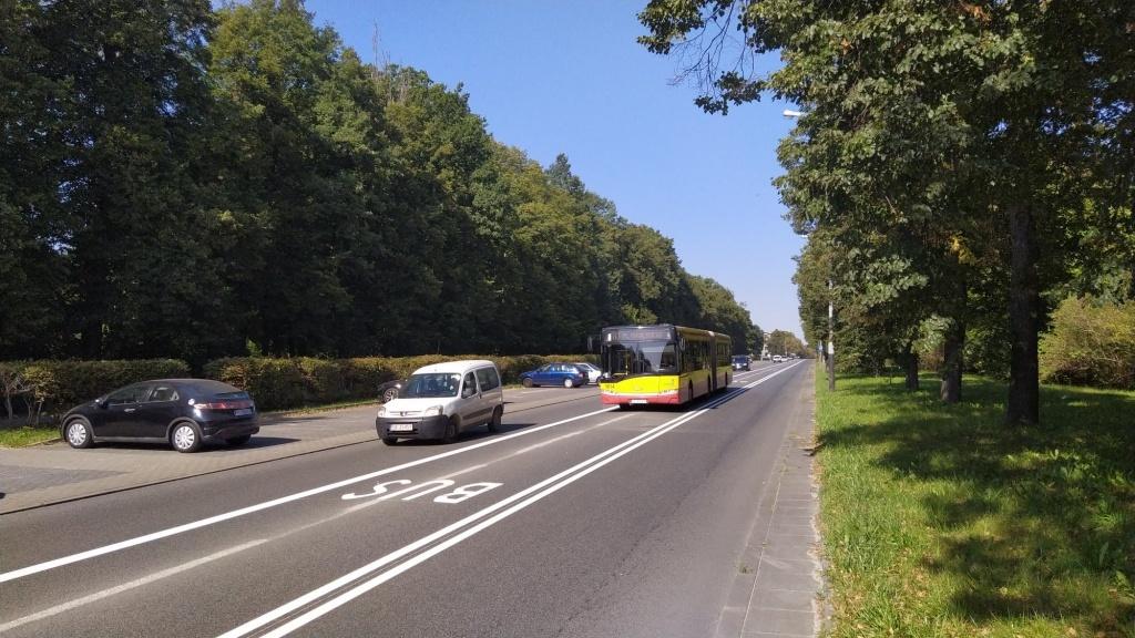Zmora kierowców. Kolejne kontrowersyjne buspasy pojawią się w Łodzi - Zdjęcie główne
