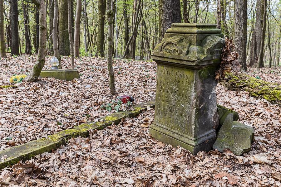 """Cmentarz na Żabieńcu Łódź. O tych ludziach nikt nie pamięta. """"Mój tata razem z klasą porządkował te groby w dzieciństwie"""" [zdjęcia] - Zdjęcie główne"""