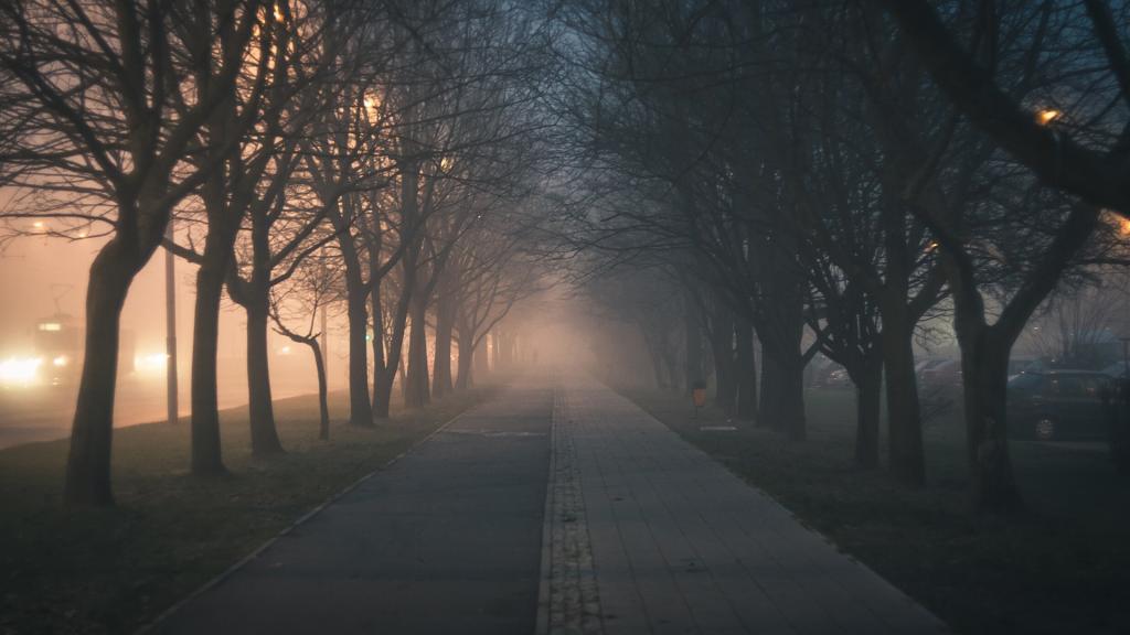 Ważne! W najbliższym tygodniu wyłączenia prądu na blisko 30 ulicach w Łodzi. Sprawdź! [LISTA ULIC] - Zdjęcie główne