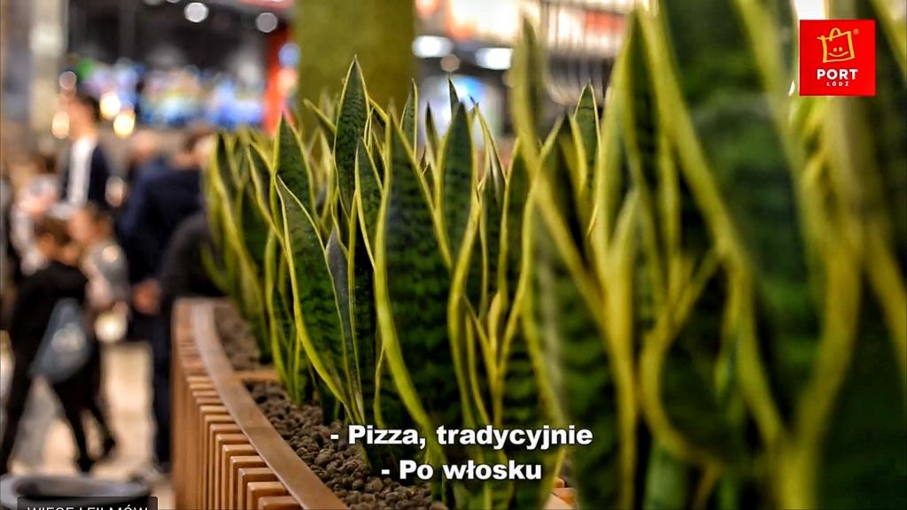 Nowe przestrzenie restauracyjne w Porcie Łódź [WIDEO] - Zdjęcie główne