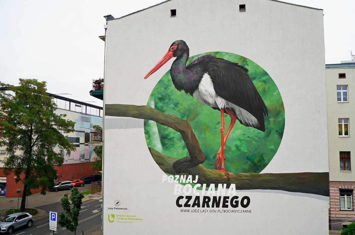 Kolejny mural w Łodzi. Bohaterem bocian czarny [zdjęcia] - Zdjęcie główne