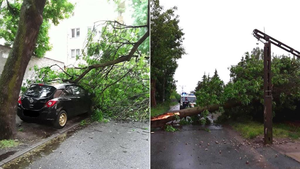 Burza w Łodzi. Połamane drzewa i uszkodzone linie energetyczne. Straż pożarna interweniuje [ZDJĘCIA] - Zdjęcie główne