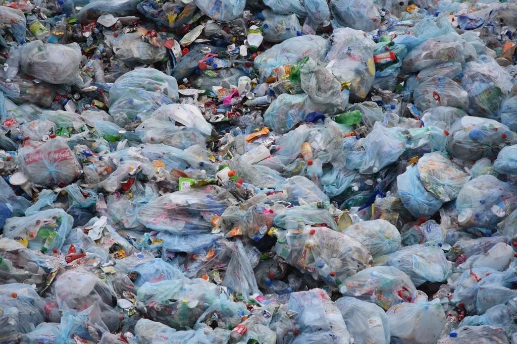 Ile zapłacimy za śmieci w 2021 roku? Możliwe, że dużo więcej niż w 2020 - Zdjęcie główne