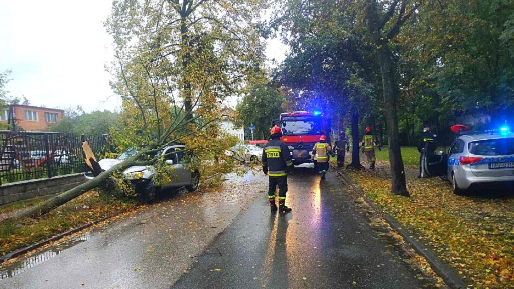 Pijany 42-latek jeździł po ulicach na Górnej w Łodzi. Swoją podróż zakończył na drzewie [ZDJĘCIA] - Zdjęcie główne