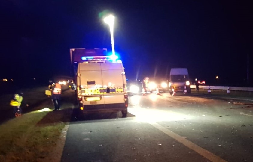Tragiczny wypadek na A1. Na autostradę wybiegł łoś. Samochodem jechały cztery osoby, jeden z pasażerów nie przeżył - Zdjęcie główne