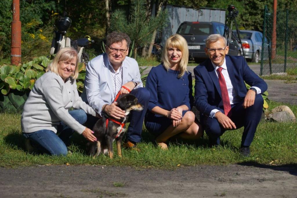 Łódzki senator deklaruje pracę nad ustawą na rzecz zwierząt – zgłosi poprawki w sprawie działalności schronisk - Zdjęcie główne